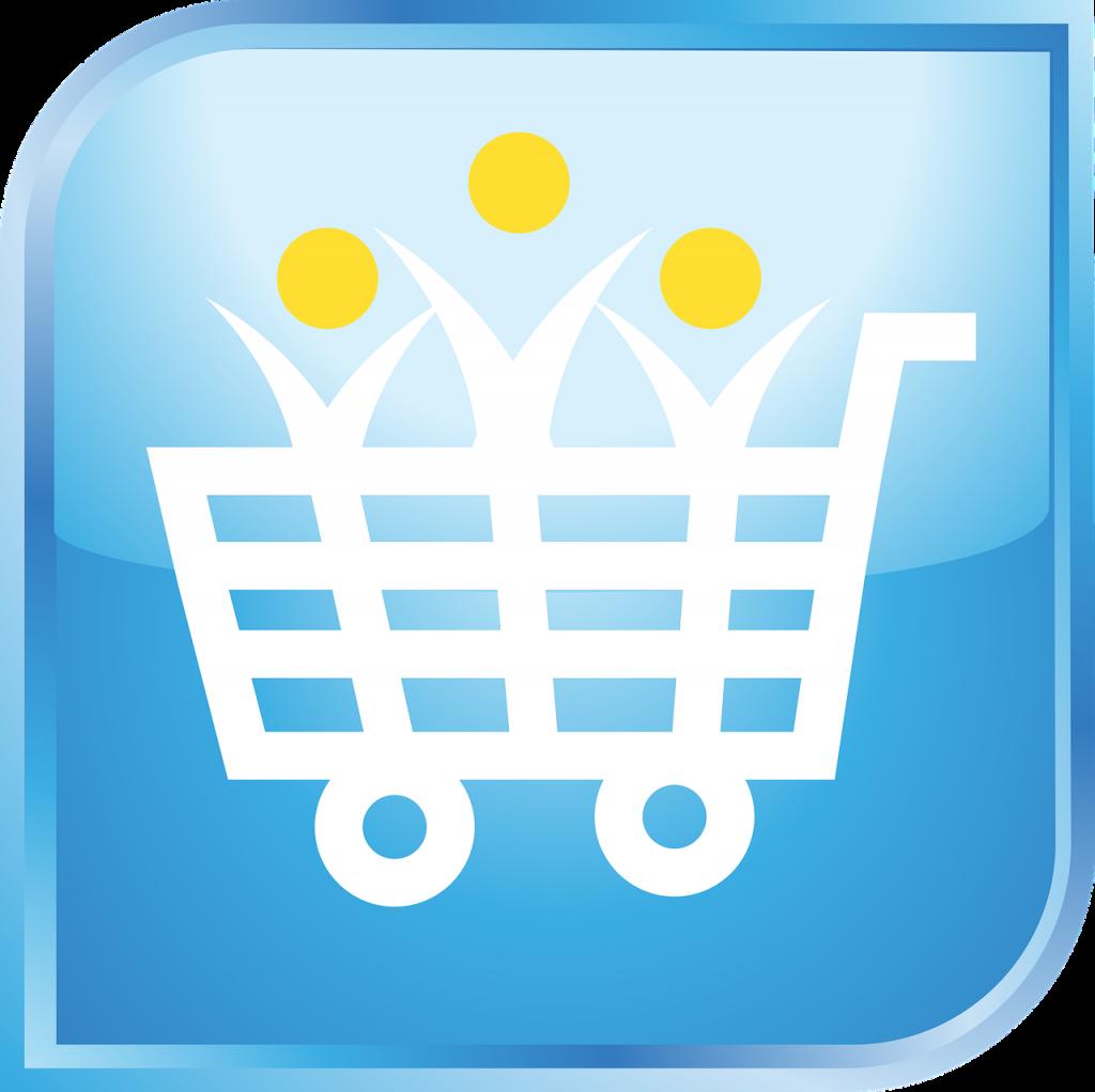 2019 Best ECommerce Platforms
